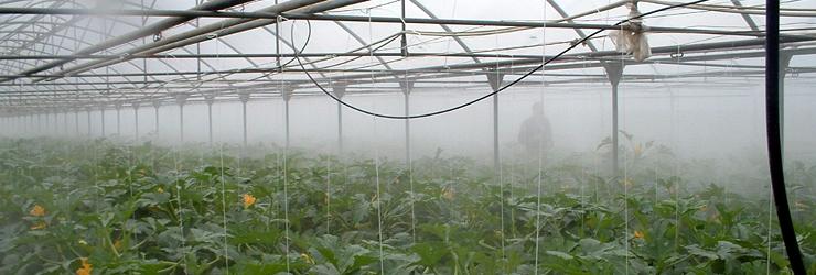 Umidificazione per serre, diffusione di fitofarmaci etc.